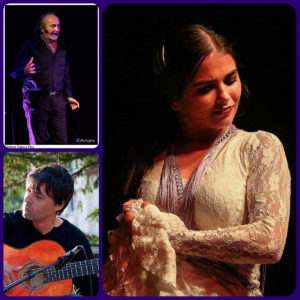 Hablando flamenco